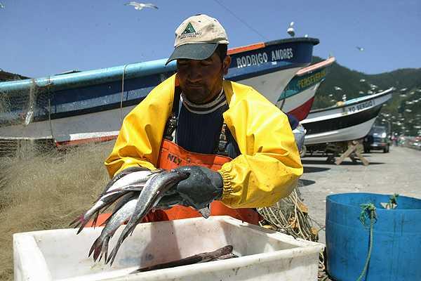 Tras un a�o de tramitaci�n, la Ley de Pesca qued� lista para ser promulgada