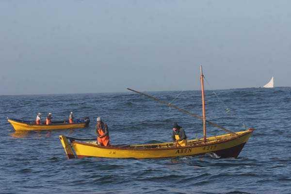TC acoge a tramitaci�n requerimiento contra la Ley de Pesca por inconstitucionalidad