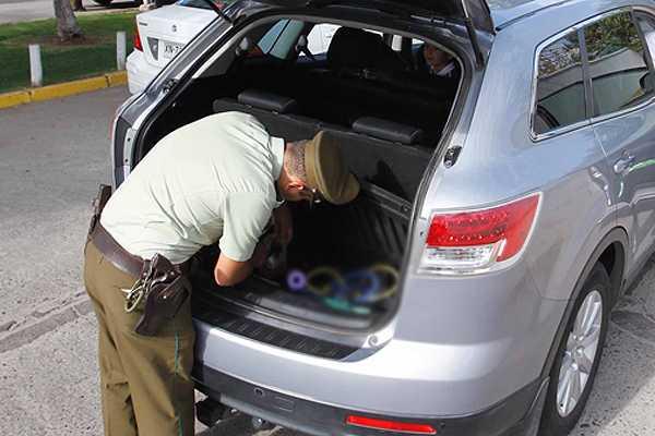 Conductor que no respet� se�al�tica portaba drogas en su autom�vil