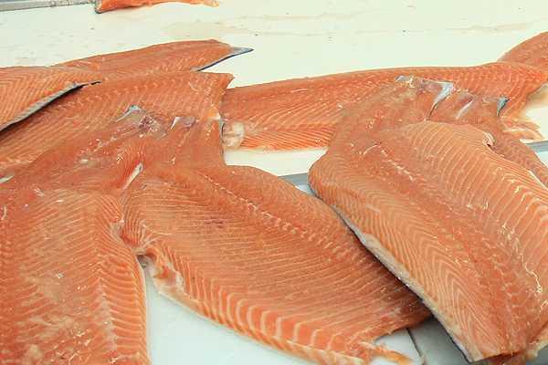 Productora noruega de salmón Cermaq recomienda a accionistas aceptar oferta de Mitsubishi